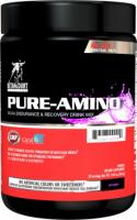 Betancourt Nutrition PURE-AMINO (336 гр)