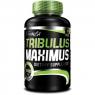 BioTech USA Tribulus Maximus 1500 mg (90 таб)