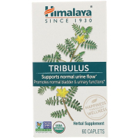 Himalaya Tribulus