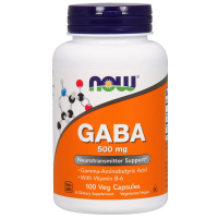NOW GABA 500 mg with B-6