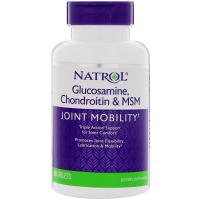 Natrol Glucosamine Chondroitin MSM